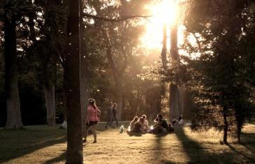 El Proceso, un documental de Juan Vicente Chuliá
